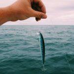 釣り用具の紹介 150x150 - 釣り用具の紹介